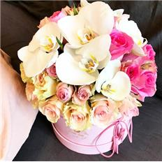 Medium pink box Roses Orchidea