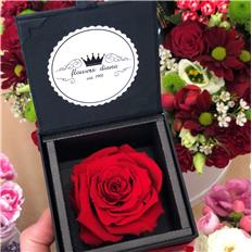 Single Deluxe rose Proposal Red
